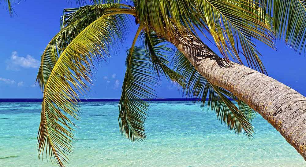 Voyage Séjour <span>Maldives</span>