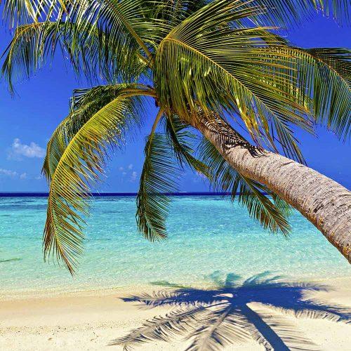 Sejour Maldives