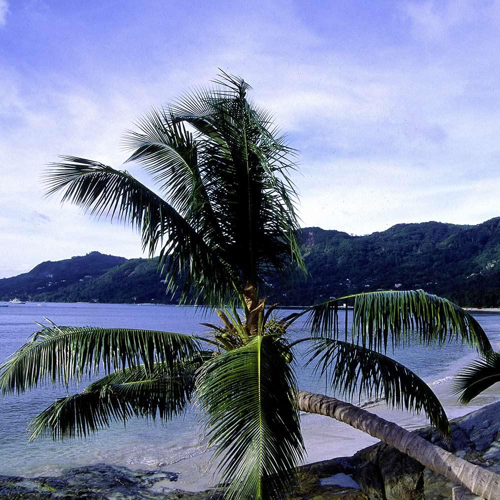 voyage seychelles s jour aux seychelles h tels et croisi res kuoni. Black Bedroom Furniture Sets. Home Design Ideas
