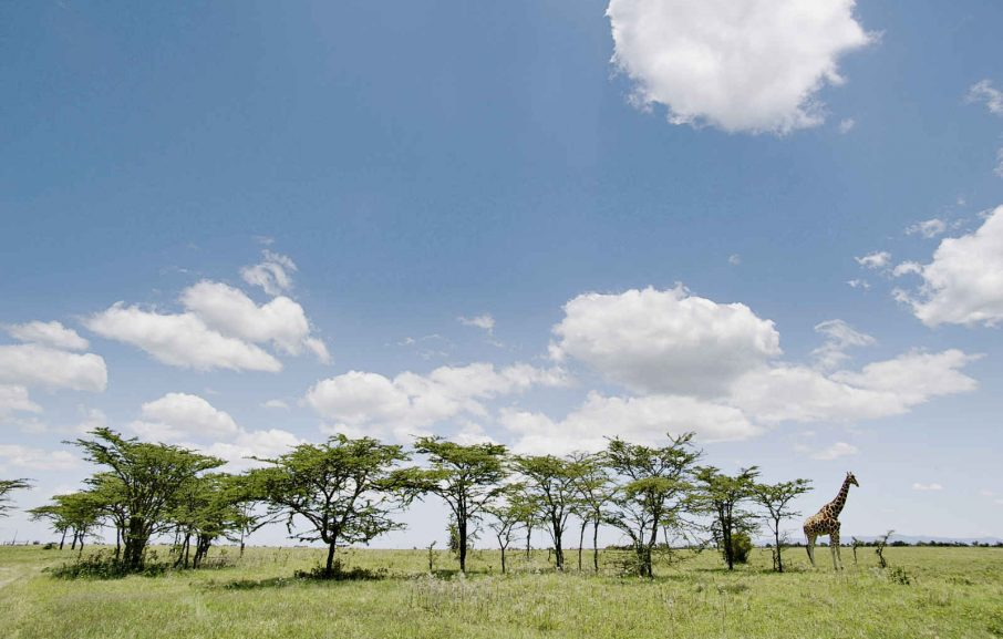 plus grand site de rencontre au Kenya Je sors avec quelqu'un de plus âgé que moi