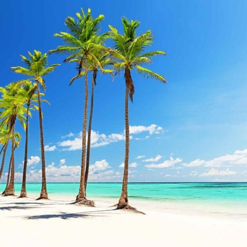 Voyage République Dominicaine tout inclus