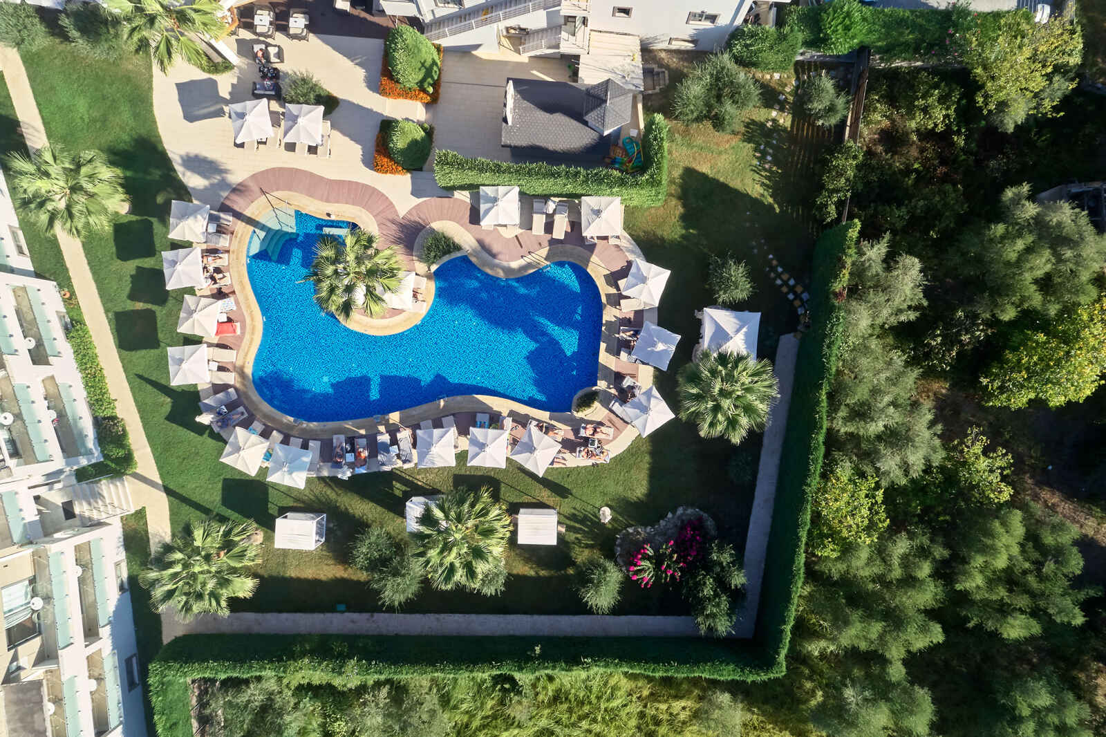 Grèce : Lesante Classic Luxury Hotel & Spa