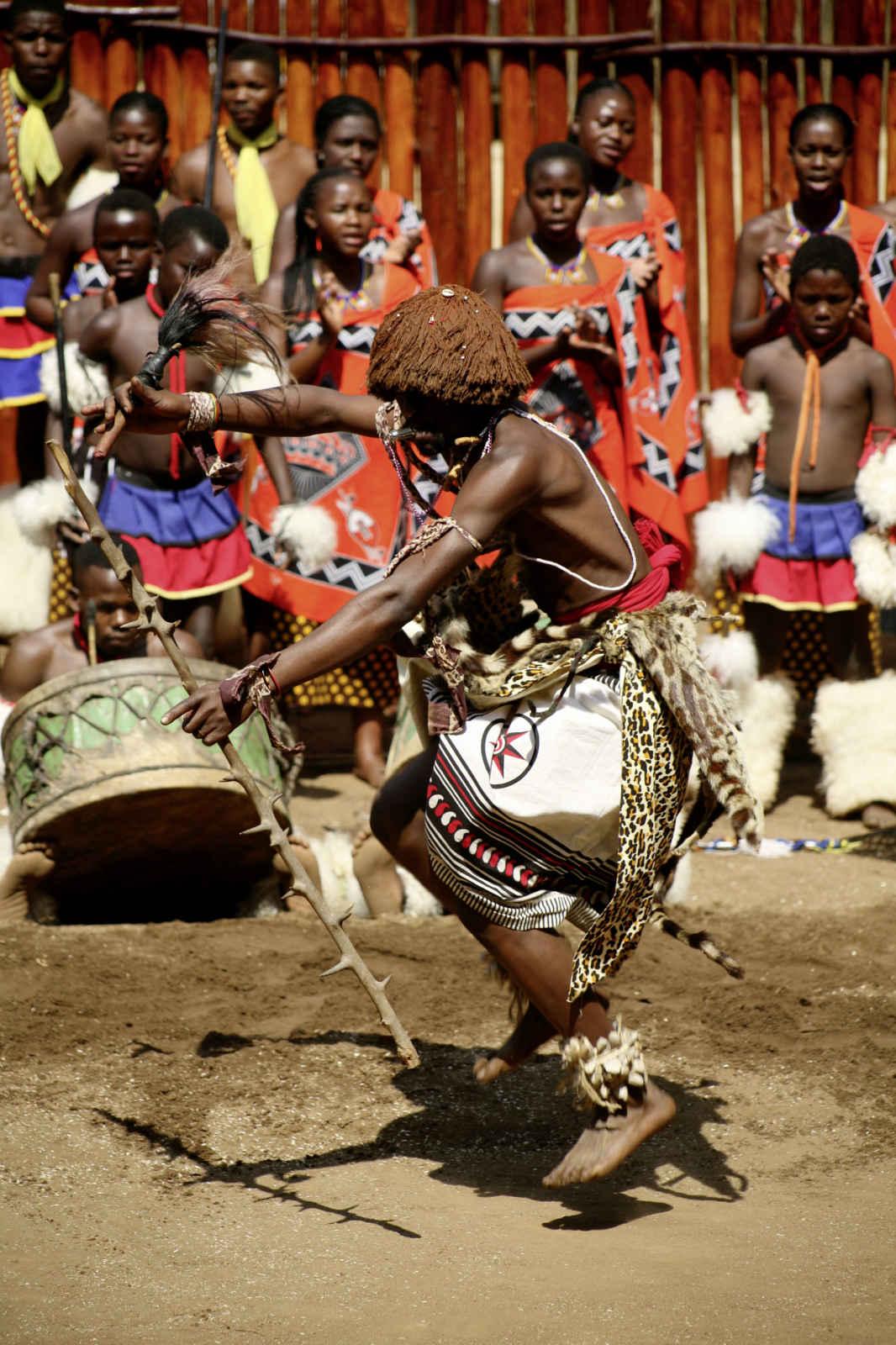 Afrique du Sud : Afrique du Sud grand format