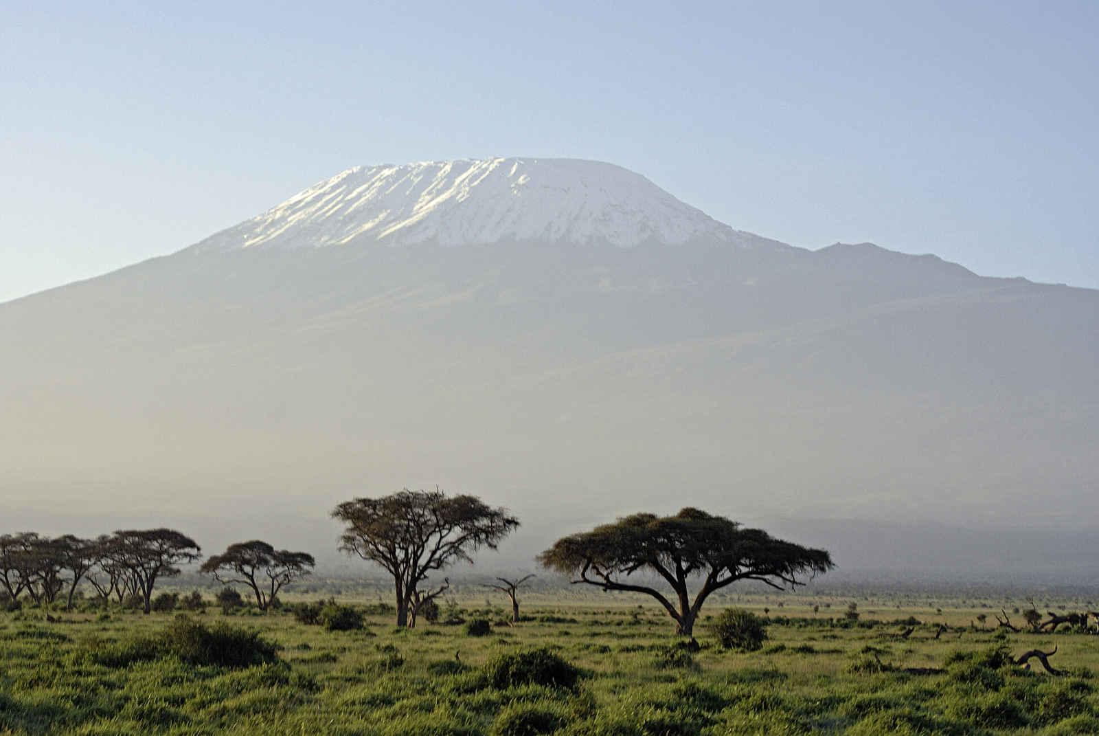 Tanzanie : Souvenirs du Kilimandjaro