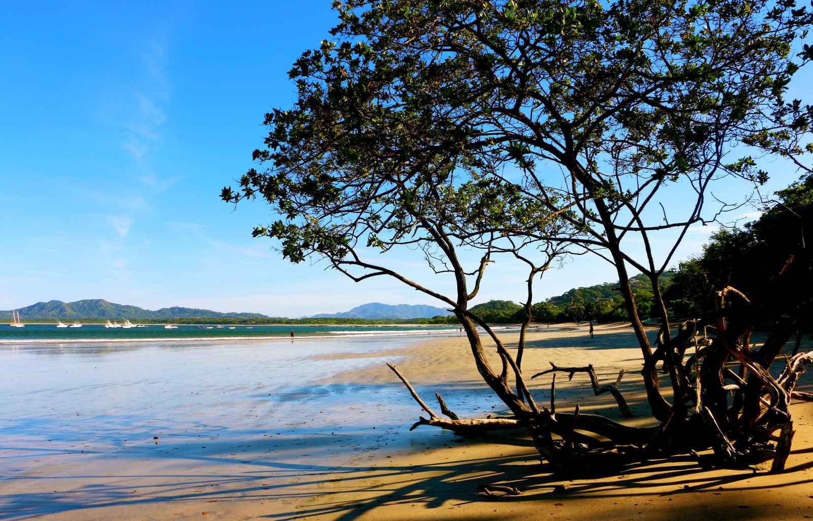 Costa Rica : Natura Rica