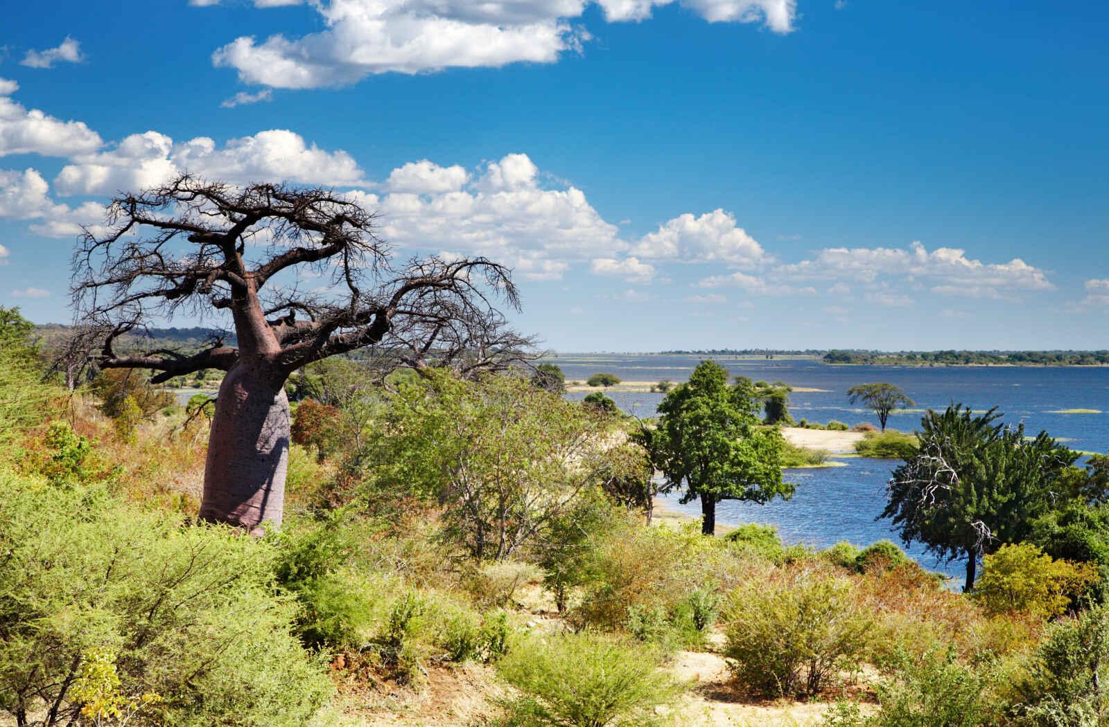 Afrique du Sud : L'Afrique australe
