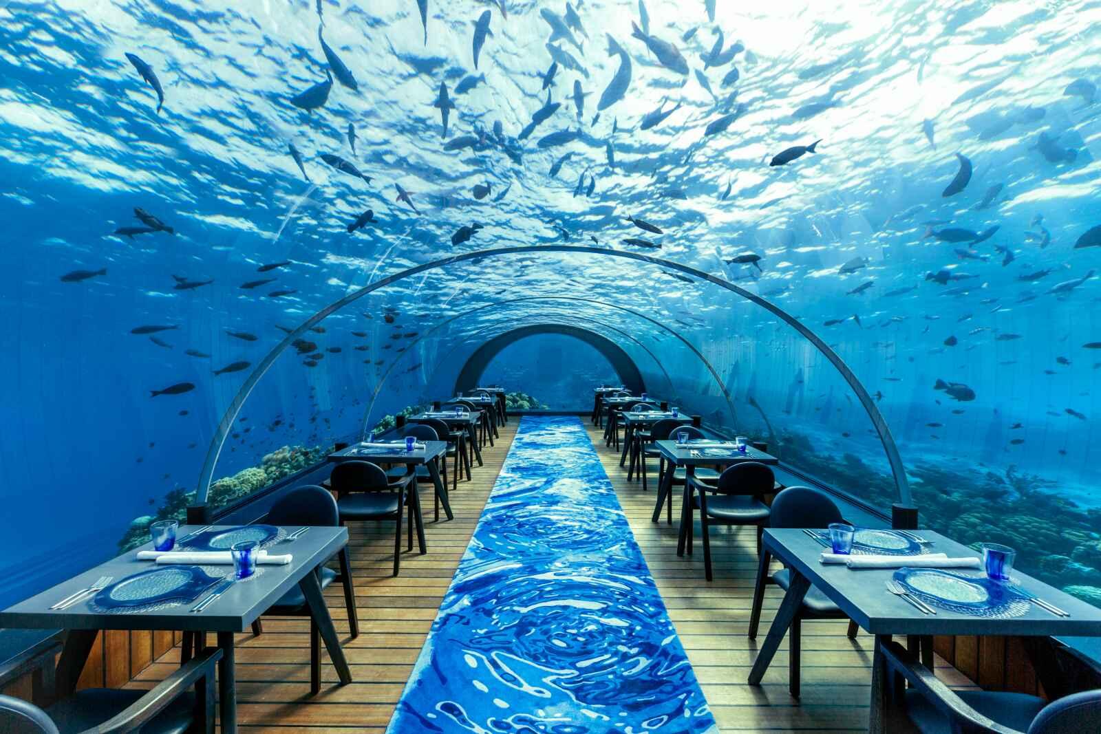 Maldives : Hurawalhi Island Resort